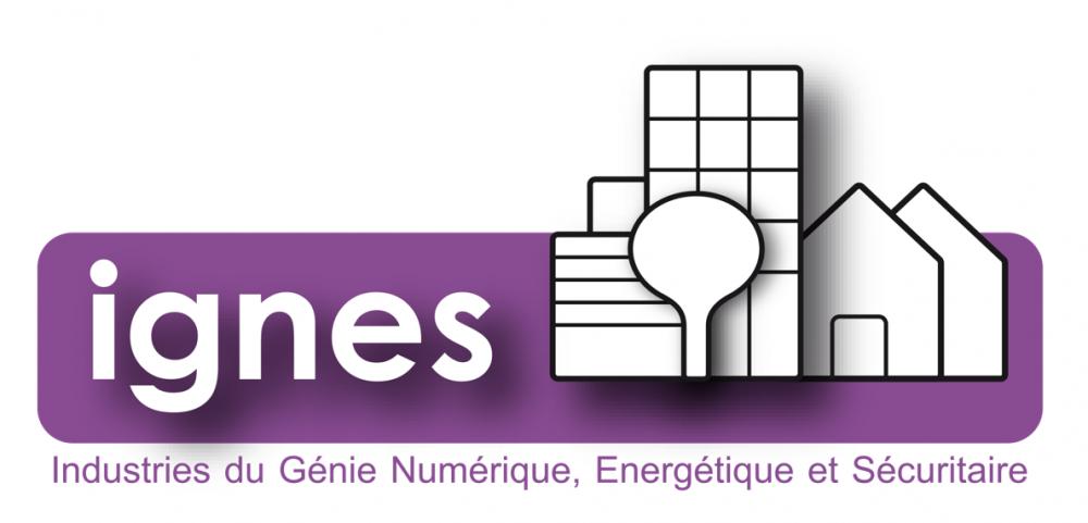 Industries du Génie Numérique, Énergétique et Sécuritaire (IGNES)